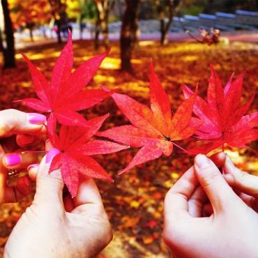 azureva vacances automne bon plan
